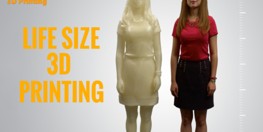Large 3D Printing by FHML